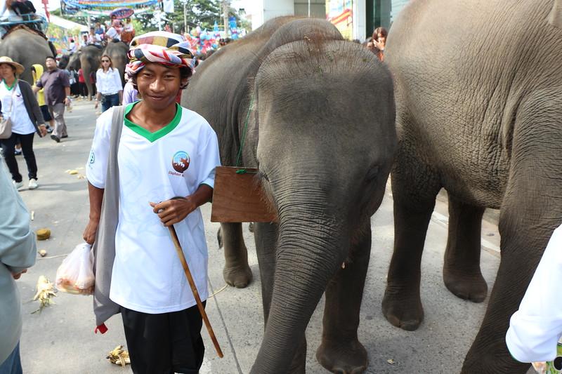 2014-11-14 Surin Elephant Welcome Feast 397.JPG