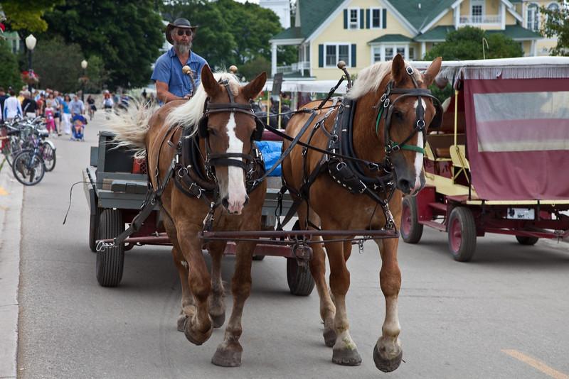 Horses on Mackinac Island