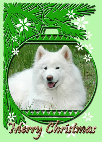 Rasia-ChristmasOrnament.jpg