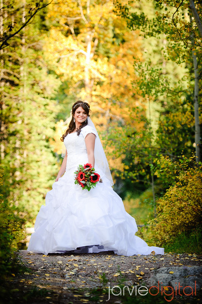 Bridal Pictures in the Canyon