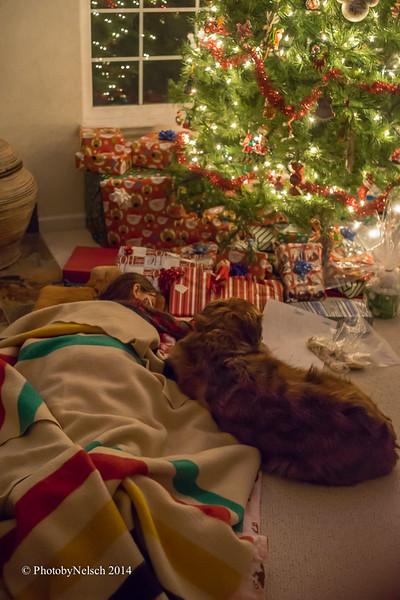 Christmas 2014-176.jpg