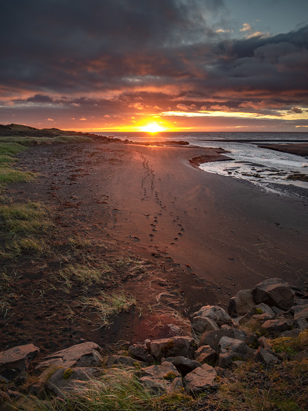 Footprints in the Sand in Iceland  Photography by Wayne Heim