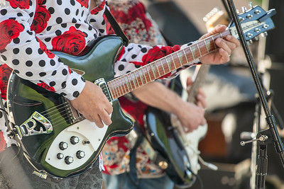 Music in the Park - Large Flowerheads