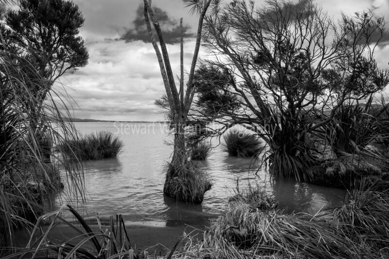 Lake Wairarapa-22SmugMug.jpg