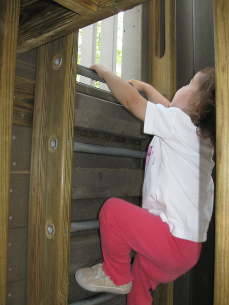 Hilary climbs up to get a better view.