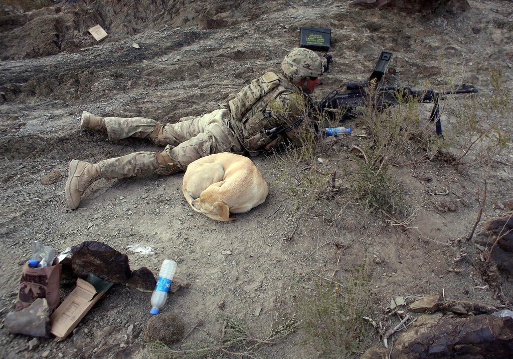 . A dog sleeps next to a U.S soldier at a hill top near the town of Walli Was during an operation in Paktika province, near the border with Pakistan, November 4, 2012. REUTERS/Goran Tomasevic