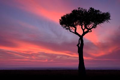 Africa-Kenya