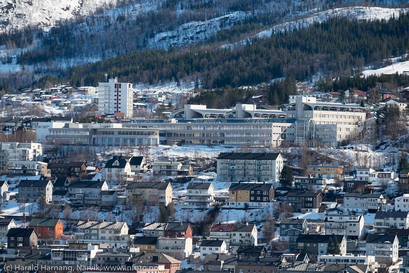 Universitetet i nord, campus Narvik