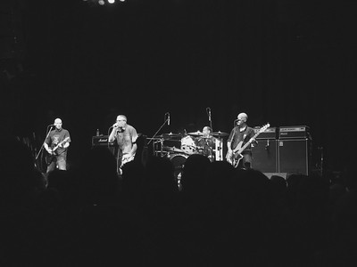 Descendents at The Norva 8/5/17