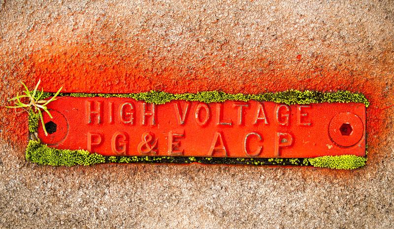 High Voltage, Campbell, California, 2008