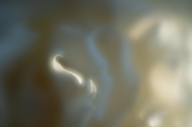 Petal Swirl