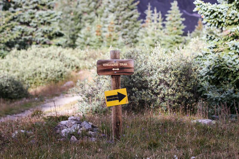Breck Crest-2.jpg