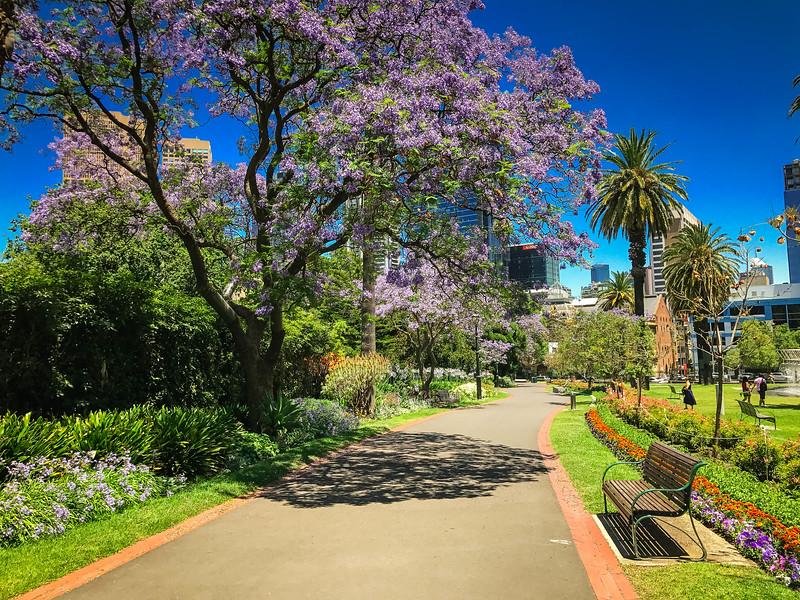 Melbourne-202.jpg