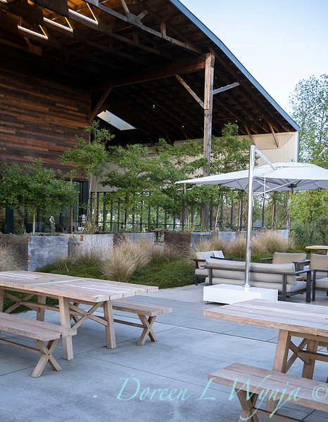 Garden at Argyle winery_1076.jpg