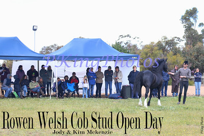 Stud Open Days