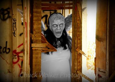 2013-1115 (Weeping Angel)