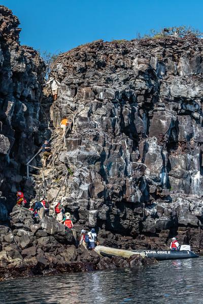 Galapagos-4007.jpg
