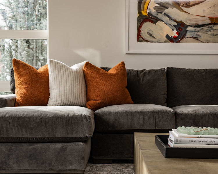 Aspen-Hyman-Living_Room-Couch_Detail.jpg