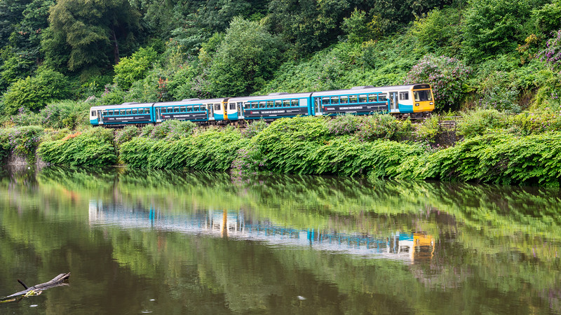 Pacer trains at Radyr