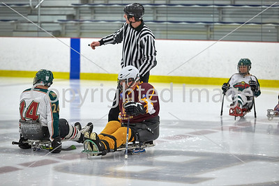 2016-03-20 Mn Wild Sled Hockey Tourney