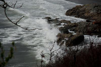 2012-03-12 Windstorm - Photo Dump