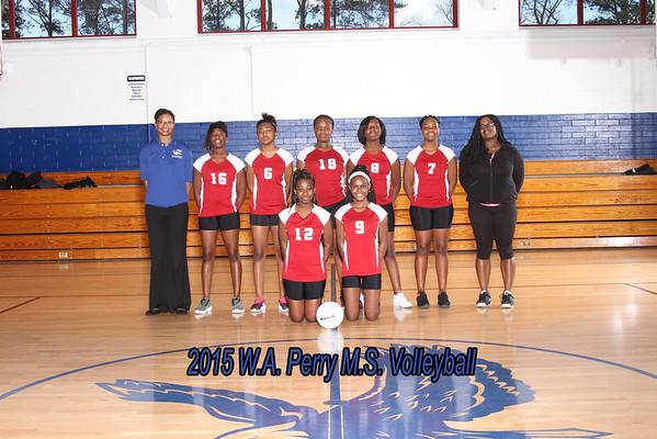 2015  Volleyball