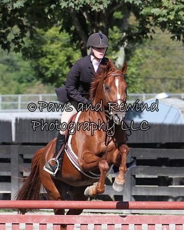 Ring III:  Pre Children's Eq Horse O/F
