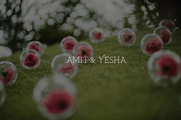 Amit and Yesha