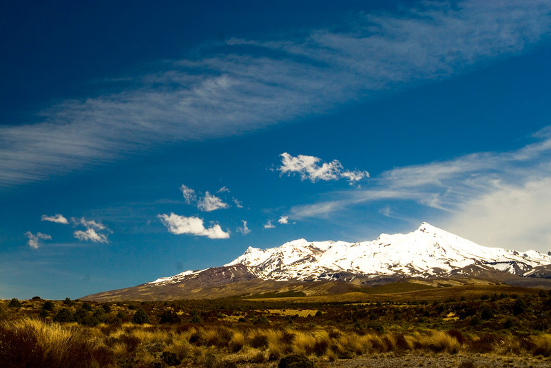 Mount Ruapehu viewed accross the tussock lands of New Zealand's central north island