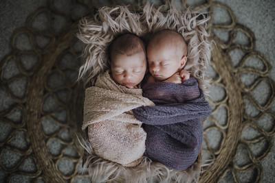 Tylo + Ayla Newborn