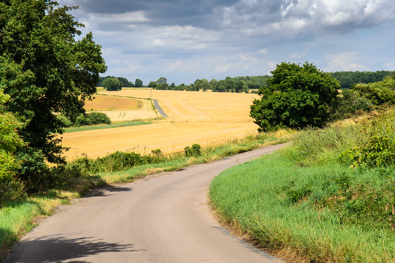 Country lane in Hertfordshire farmland