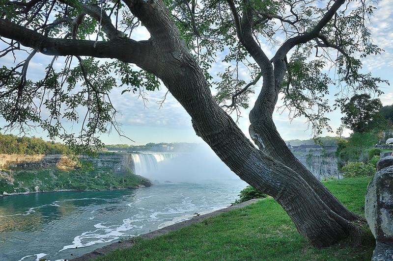 DSC_7952_185_Niagara.jpg