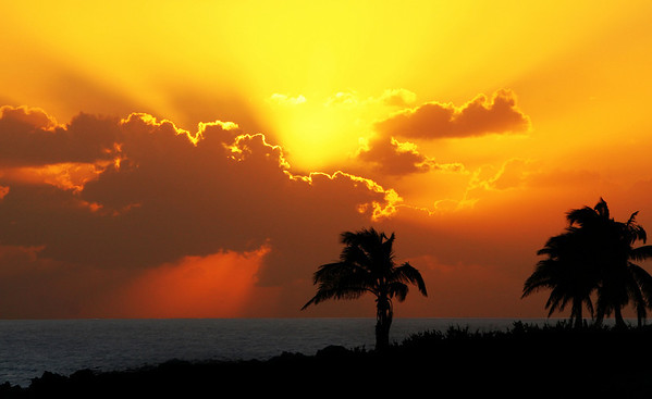 Grand Cayman Island 2009