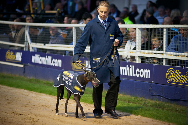 English Greyhound Derby Meeting 2011