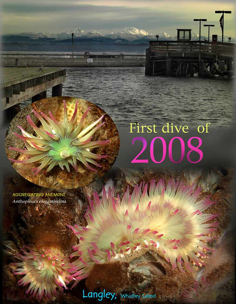 2008 S.jpg
