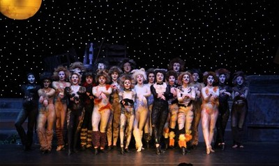 Cats 2014