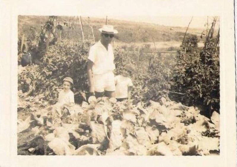 Luxilo-Jorge Marques e filhos-1965