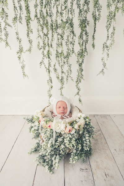 rockford_newborn_photography_O013.jpg