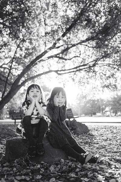 The-Sinha-Family-Japanese-Garden-59.jpg
