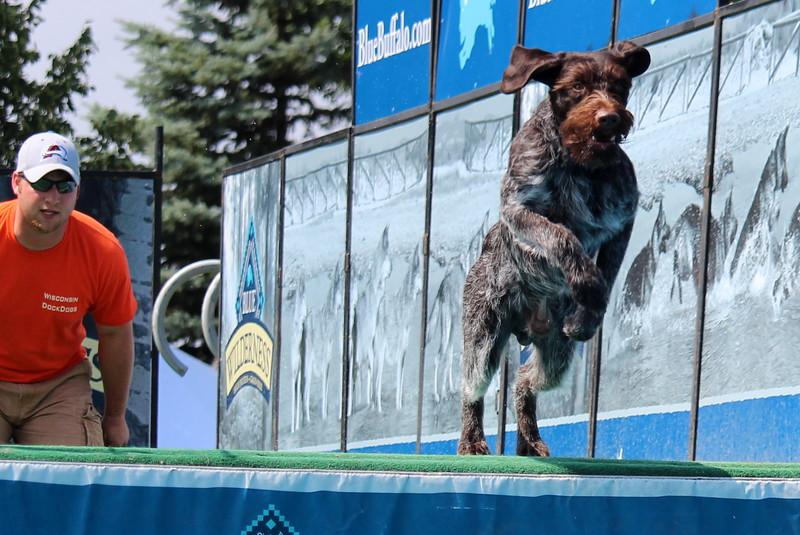 Dock Dogs at Fair-152.JPG