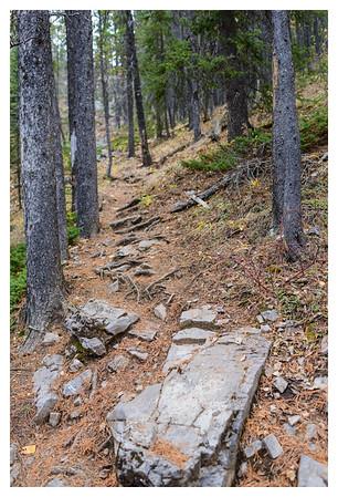 2014-10-19 Mt Baldy