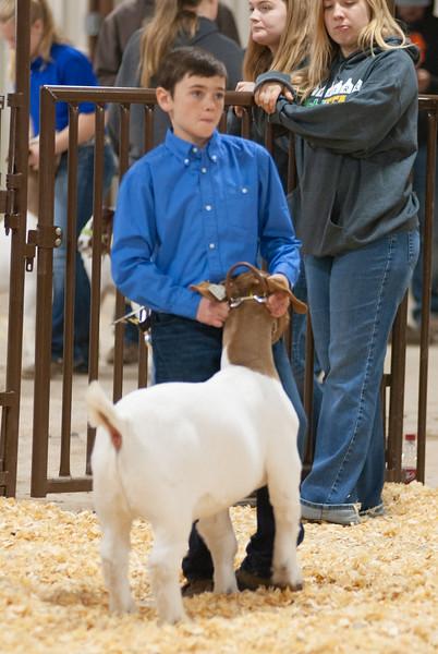 kay_county_showdown_goats_20191207-56.jpg