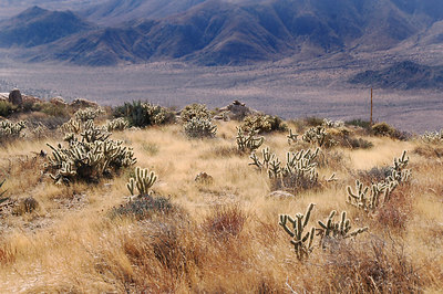 Anza-Borrego - Granite Mountain 1/7/06