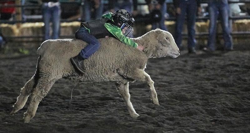Enumclaw Rodeo 2019 - _15A5752.jpg