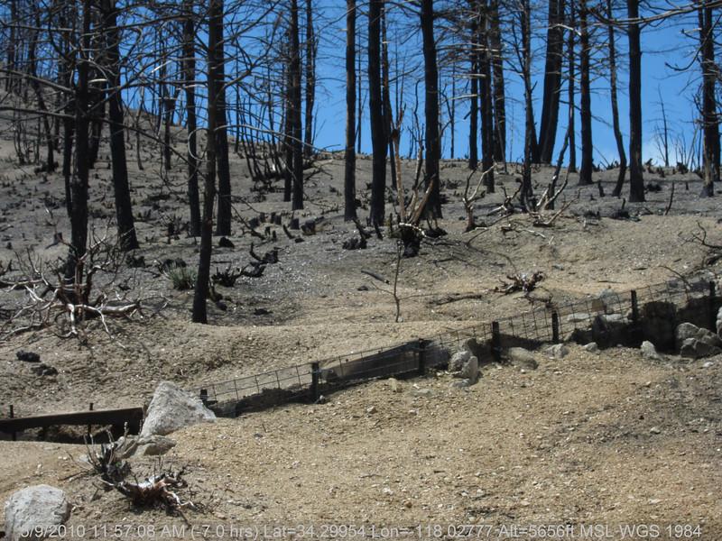 20100509070-Trail Recon, Vetter Mountain Trail.JPG