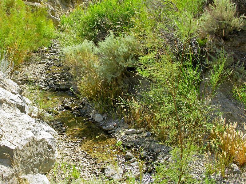 Lower Mississippi Creek