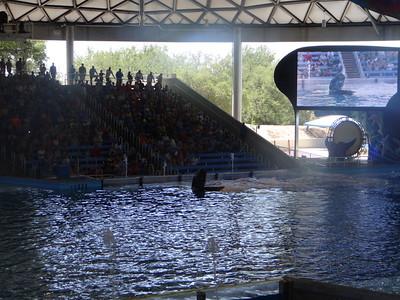 Sea World San Antonio 5/14