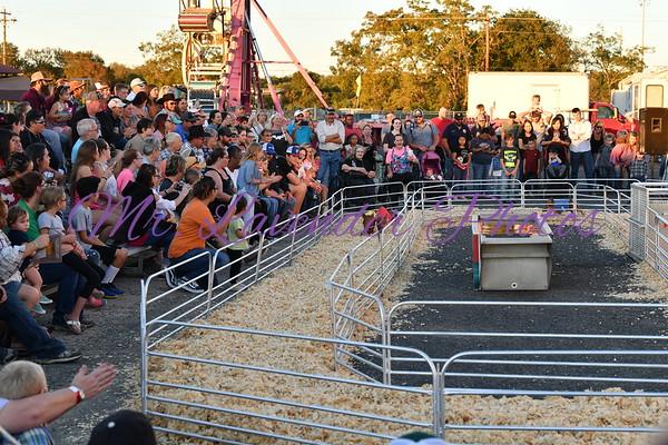 39th Kerr County Fair
