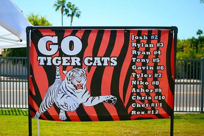Tiger Cat - Soccer 2009