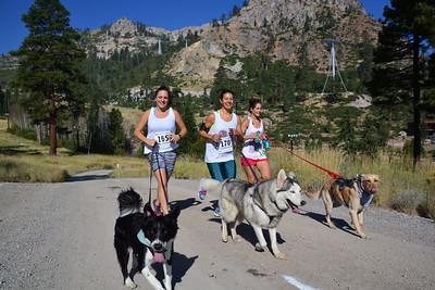 Squaw 2 Alpine 10k Trail Run